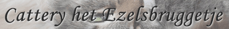 Banner Van het Ezelsbruggetje